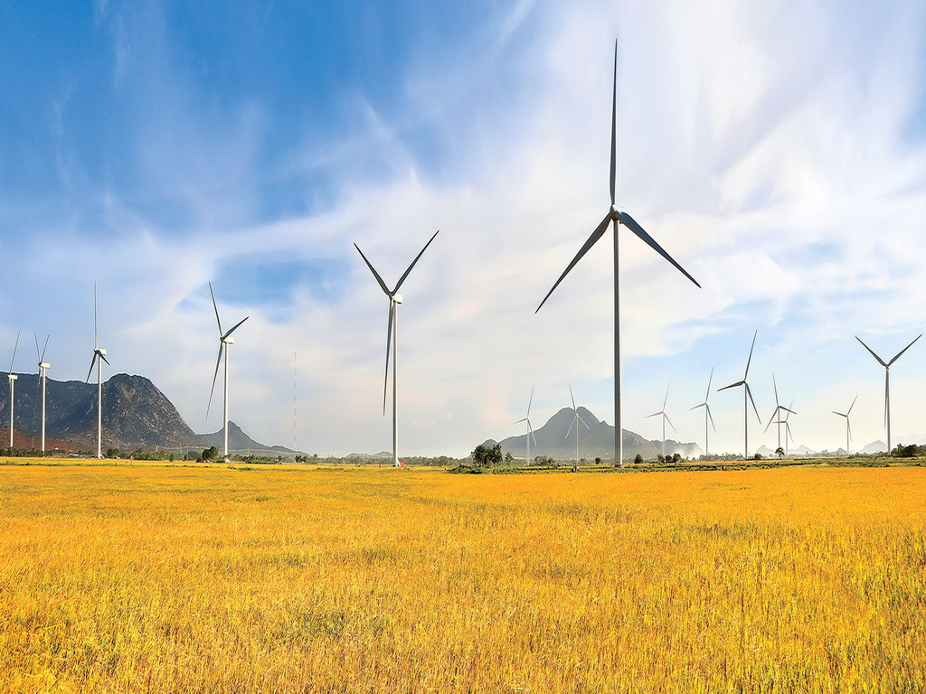 Vietnam wind sector to see growing opportunities: Fitch Solutions