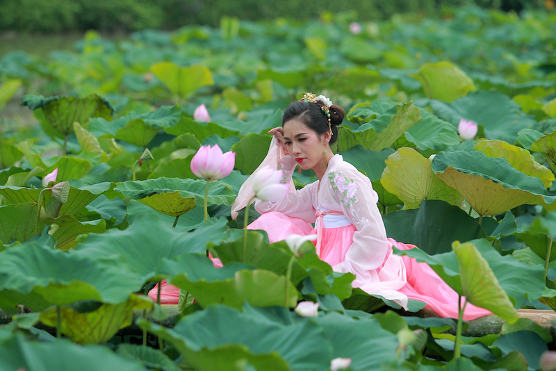 Hanoian girls posing with lotus flowers