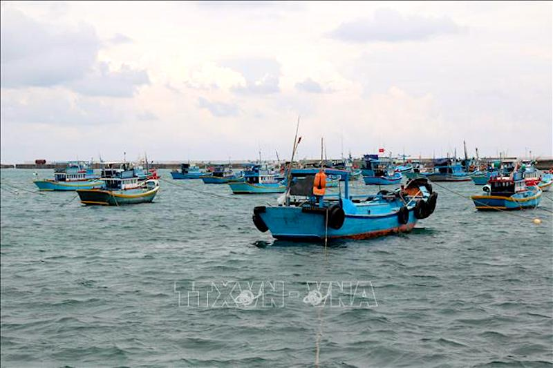 Vietnam keeps combating IUU fishing to lift EC 'yellow card'