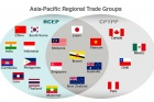 RCEP: Regional free trade pact with profound impacts on the world