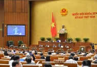 Vietnam's growth engines come from both supply and demand sides: Minister