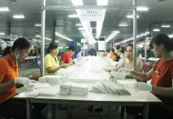 Vietnamese rural women face job displacement from Industry 4.0