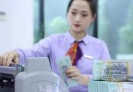 Vietnam's credit growth slows down amid strong GDP expansion