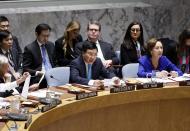 Vietnam chairs open debate at UN Security Council