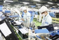 Vietnam forecast to keep 7%-GDP growth in third consecutive year: NCIF