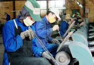 322 enterprises in Vietnam suspend operation on Covid-19