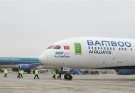 Vietnam's first airline suspends flights to S.Korea