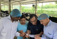 US supports Vietnam in sustainable livestock practice