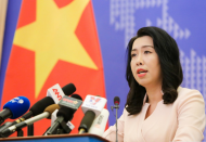No bias in treating foreigners in Covid-19 pandemic: Vietnam spokesperson