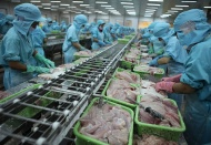 Vietnam Fin Min proposes tripling fiscal stimulus package to US$3.4 billion