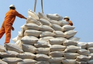 Vietnam trade ministry proposes resuming rice export