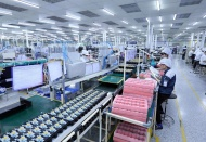 Vietnam's Q2 GDP growth forecast to slow to 2% or even fall into recession