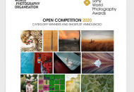Vietnamese photographers shortlisted at Sony World Photography Awards 2020