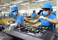 48% of enterprises in Vietnam reporting losses: White paper