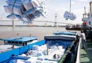 Vietnam resumes normal rice export in May