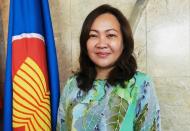 Vietnam prioritizes people's well-being in coronavirus fight: Ambassador