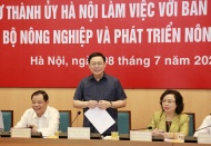 Hanoi targets hi-tech farming to make up 70% of total agricultural production value