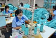 Finalization of legal framework needed to accelerate SOE privatization: Vietnam DPM