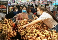 Hanoi promotes domestic consumption to beef up economic growth