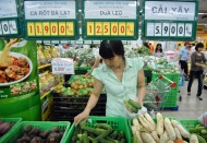 Vietnam inflationary pressures predicted to remain weak in 2020 – 2021