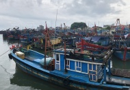 Vietnam puts in place measures to address illegal fishing