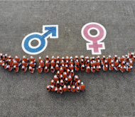 Vietnam advances greatly in gender equality, but remains far from full equality: UN Women