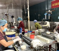 Hanoi special tofu set for large scale production