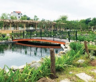 Phu Dong commune urbanized to be an eco-tourism site