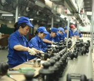 Vietnam economy to enjoy a rosy 2021: HSBC