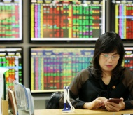 Vietnam stock market watchdog addresses overload issue