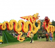 Experience Vietnamese traditional Lunar New Year at Thang Long Imperial Citadel
