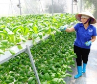 Vietnam agro-forestry-fisheries exports to reach US$50 billion revenue by 2025