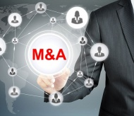 Vietnam M&A activity in strong position for recovery in 2021: PwC