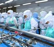 US agency cancels anti-dumping tariff on Vietnamese shrimp