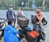 """Hanoians join hand to """"rescue"""" Hai Duong's farm produce"""