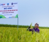 USAID-supported forest service project generates US$120M for Vietnam annually
