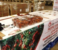 First batch of Vietnamese lychees exported to EU