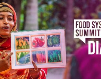 Vietnam towards healthy and sustainable food system