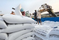 Vietnam stops exporting rice from March 24 on Covid-19