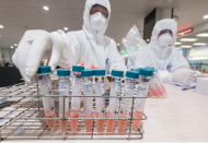 July 31: Vietnam reports 45 coronavirus cases, highest ever daily caseload