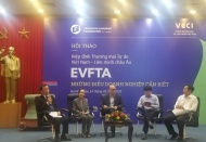 EVFTA to help realize Vietnam's high-income status ambition: Expert
