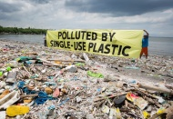 SEA of Solutions: Internationally systematic approaches to marine pollution