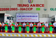 Vietnam ships first batch of rice in 2021