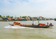 Vietnam's bold policy for Mekong Delta works