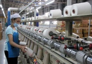Effective institutional reforms to help Vietnam GDP growth of 6.76%