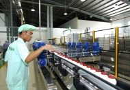 Vietnam firm secures first Push facility in ASEAN