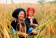 Vietnamese Gov't targets sustainable poverty reduction for everyone
