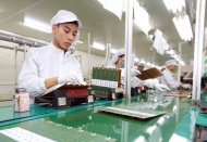 Vietnam Gov't issues new resolution to support businesses