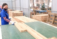 Vietnam's wood industry strives to extend its reach globally