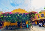 Hoi An planned to be a green destination by 2023